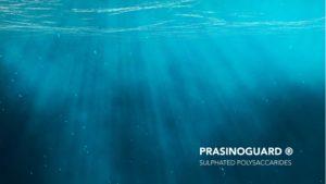 Prasinoguard_sea2