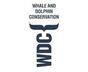 Wale 2-01